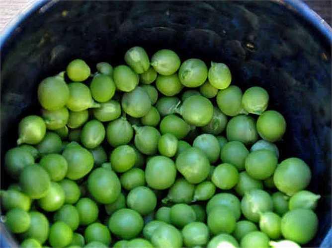 Đậu Hà Lan: chứa các khoáng chất và vitamin, chất xơ, protein và lutein rất tốt cho cơ thể. Nó có giá trị dinh dưỡng cao và nó thực sự tốt khi tiêu thụ hàng ngày. Lưu ý: hãy chọn đậu còn tươi.