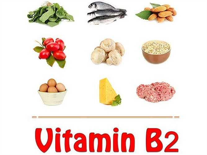 Vitamin B2: Vitamin này còn được gọi là riboflavin. Nó cần thiết cho sức khỏe tốt, phát triển bình thường và tăng tỷ lệ trao đổi chất. Lượng thường xuyên của vitamin này giúp tăng cường năng lượng và tăng cường hệ thống miễn dịch.