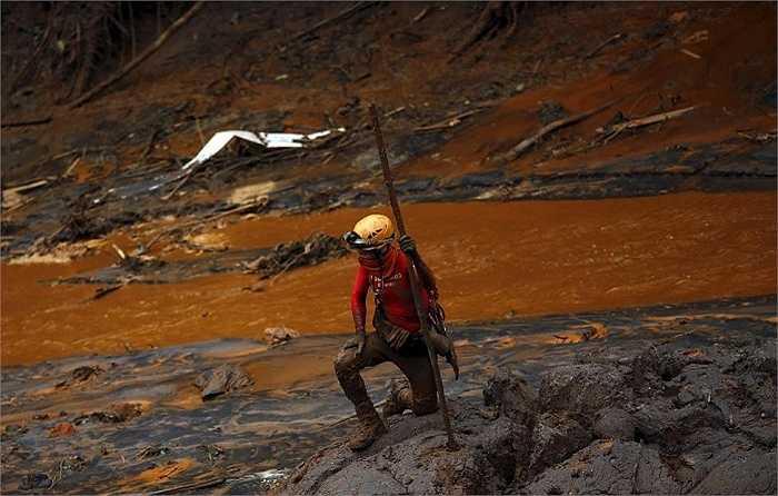 Một nhân viên cứu hộ tìm kiếm các nạn nhân ở Bento Rodrigues sau khi con đập chứa nước thải từ một mỏ quặng sắt tại Brazil hôm 5/11 bị vỡ gây lở đất