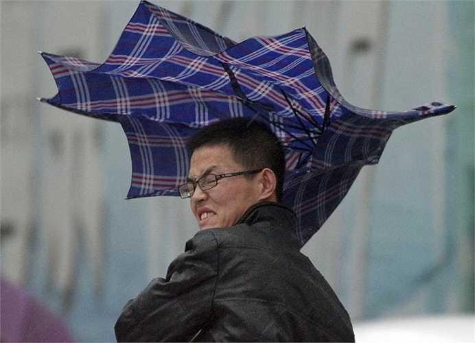 Người đàn ông cầm ô chống chọi gió lớn trong một trận mưa lớn ở Yên Đài, tỉnh Sơn Đông