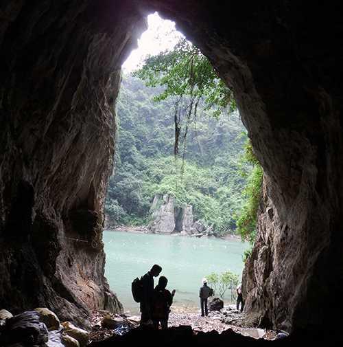 Trên 20 hạng động vừa được phát hiện trên khhu vực vịnh Hạ Long và vịnh Bái Tử Long (Quảng Ninh) - Ảnh do Ban quản lý cung cấp