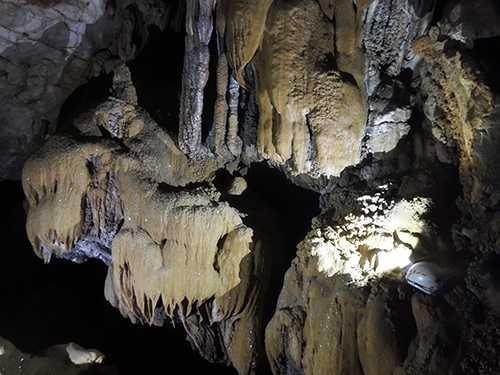Một số măng nhũ đá trong một hang mới phát hiện tại sườn Đông Bắc đảo Bồ Hòn