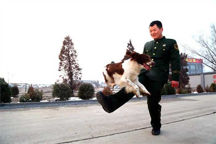 Zhang và chú chó Maomao vui đùa với nhau khi còn luyện tập