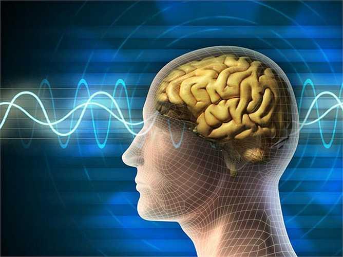 Các tế bào não hoạt động tốt hơn: Một nghiên cứu cho thấy những người ăn sữa chua thường xuyên có hoạt động về não tốt hơn. Vì nó tăng cường khả năng nhận thức của một người trong một thời gian nhất định.