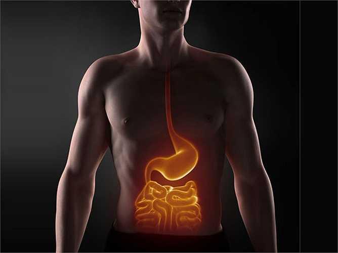 Dạ dày trở nên dễ chịu: Các vi khuẩn tốt trong sữa chua tốt cho hệ tiêu hóa của bạn và giải quyết các vấn đề như táo bón. Ngoài ra, cơ thể bạn sẽ có thể hấp thụ thêm nhiều chất dinh dưỡng.