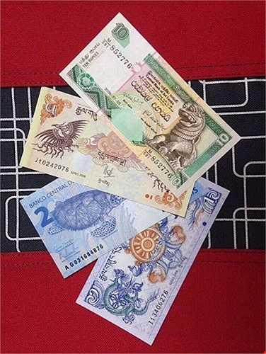 Theo các chủ shop tiền lì xì ở Hà Nội, các loại tiền mang ý nghĩa phong thủy thường đắt khách tìm mua, chủ yếu là khách kinh doanh. Mỗi tờ tiền lại có ý biểu trưng riêng. Ví dụ như đồng tiền in hình Quy: tượng trưng cho sức khỏe và trường tồn.