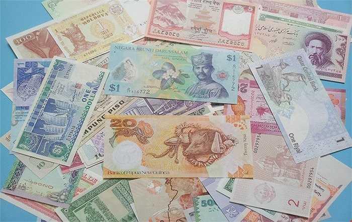 Theo chủ các shop đổi tiền, sưu tập tiền ở Hà Nội, bộ tiền này đều là tiền mới, với nhiều chất liệu khác nhau như cotton hay polime. Chủ yếu là tiền đương đại (tiền đang sử dụng) và tiền thời chế độ cũ của một số nước như các nước châu Âu đa phần là tiền ở chế độ cũ của nước đó vì hiện tại đang dùng đồng tiền chung Euro.
