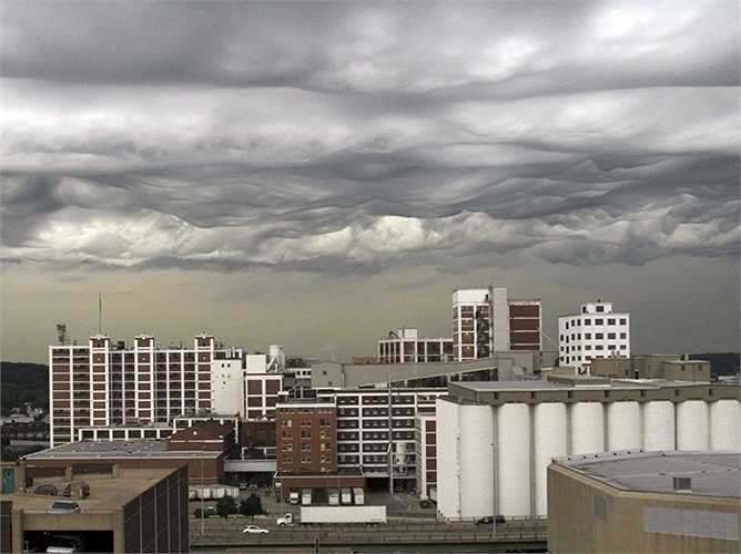 Khu vực sinh sống của người da đỏ phía Bắc nước Mỹ, bang Iowa là vùng duy nhất quan sát được những đám mây Van Gogh kì lạ. Song đây không phải là một hiện tượng đáng quan ngại bởi chúng sẽ tiêu tan sau đó khoảng 15 phút.