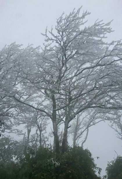 Ở chân núi nhiệt độ anh Đoàn đo được là 4 độ C, do đó để ngắm băng giá mọi người phải lên đỉnh núi. Ở độ cao 1.930 m so với mặt nước biển, dãy núi Phia Oắc được coi là nóc nhà của tỉnh Cao Bằng.