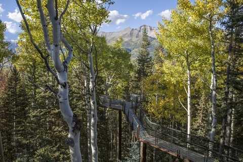 Con đường tiến lên cổng chính ngôi nhờ được xây dựng bằng những tấm ván gỗ chắc chắn và ở độ cao hơn 10m so với mặt đất