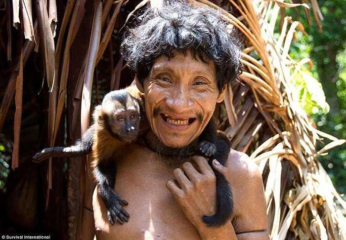 Primates, một loài khỉ, là một trong những nguồn thực phẩm chính của người Awa, nhưng những phụ nữ đang cho con bú sẽ không ăn loại thực phẩm này