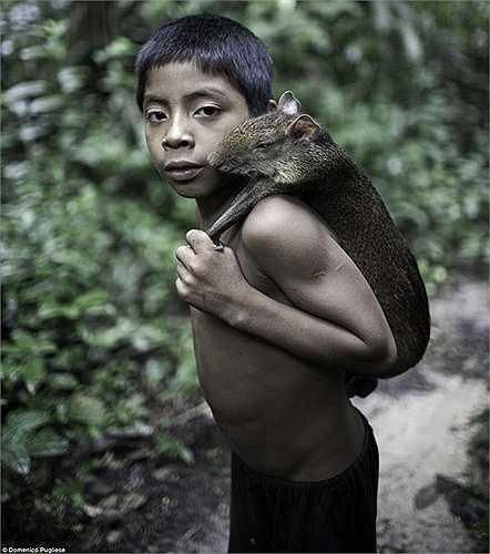 Hầu hết người dân ở bộ tộc Awa chết do bệnh dịch, số ít còn lại sống sót thì bị bắt làm nô lệ