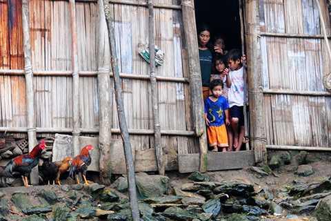 Cặp vợ chồng, khắc khổ, 13 đứa con, sống biệt lập, trong rừng, Quảng Ngãi