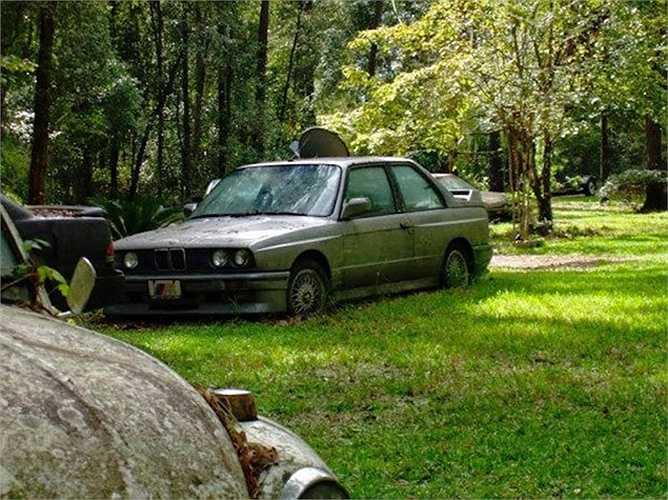 Một chiếc BMW M3 E30 đời đầu nằm phơi mình trên một bãi cỏ. Hiện nay, một chiếc BMW M3 đời này ở trong tình trạng hoạt động bình thường có giá không dưới 50.000 USD.