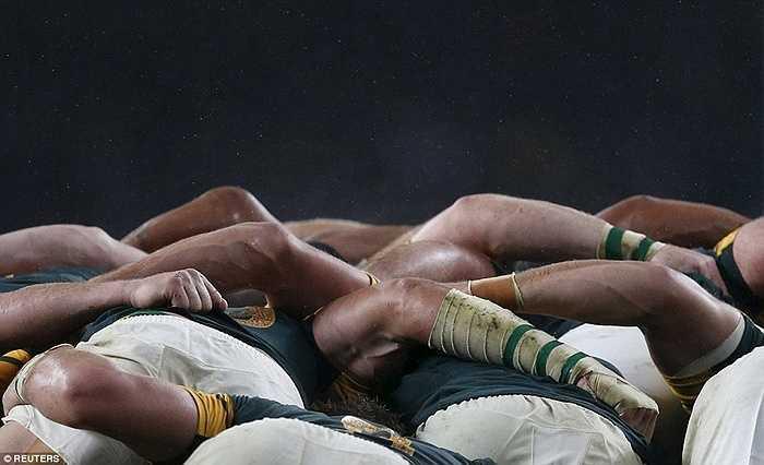 Các cầu thủ Nam Phi quyết tâm trước cuộc đọ sức với New Zealand tại bán kết World Cup bóng bầu dục