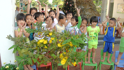 Học sinh mẫu giáo trường Tinh Hoa bên chậu hoa mai nở rộ.