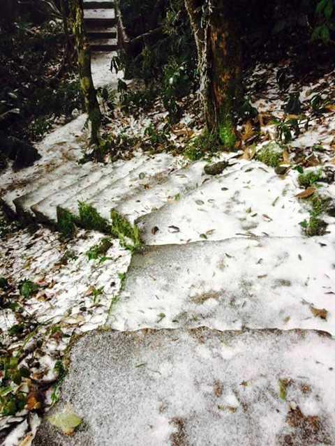 Tuyết xuất hiện ở khắp mọi nơi