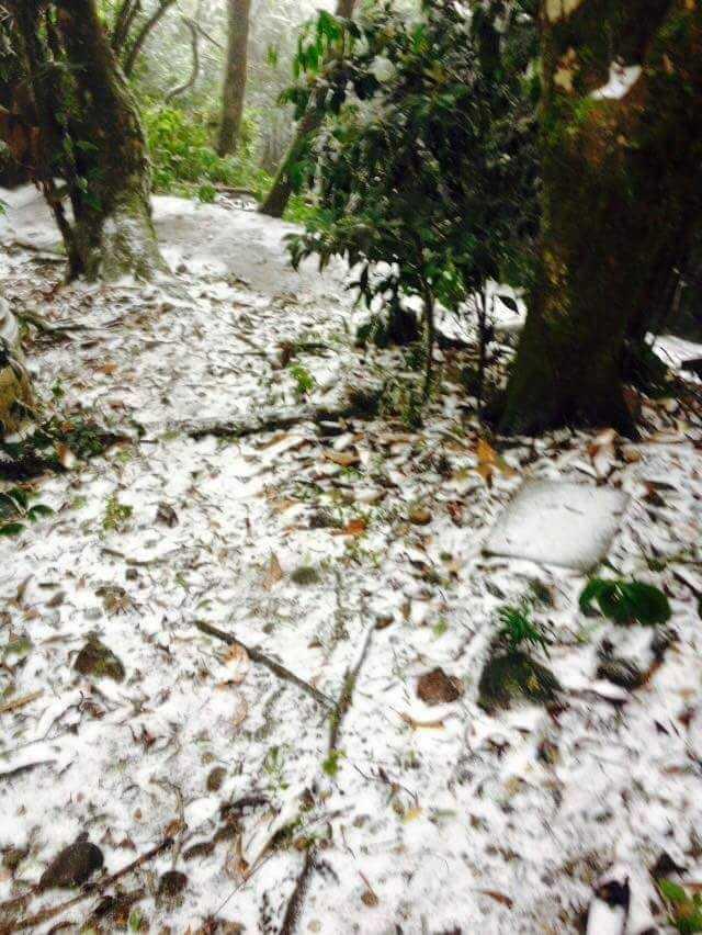 Tuyết trắng xoá khu vực vườn quốc gia Ba Vì và Ba vì resort (Ảnh:Thiên Địa Nhân)