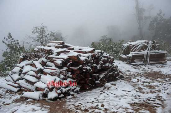 Tuyết bắt đầu rơi từ chiều ngày 24/1 ở nhiều xã miền núi Nghệ An.