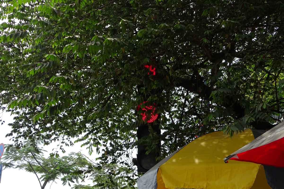 Tuy nhiên, tại đoạn Phạm Phú Thứ - Võ Văn Kiệt (Q6), cột đèn giao thông vẫn bị các cây che khuất tầm nhìn người đi đường