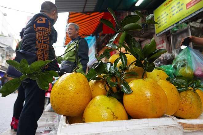 Bưởi Diễn cho mâm cúng lễ tết ông Công ông Táo bán ở chợ Hàng Bè có giá 70.000 đồng mỗi quả, trong khi ở nơi khác chỉ khoảng 50.000 đồng.