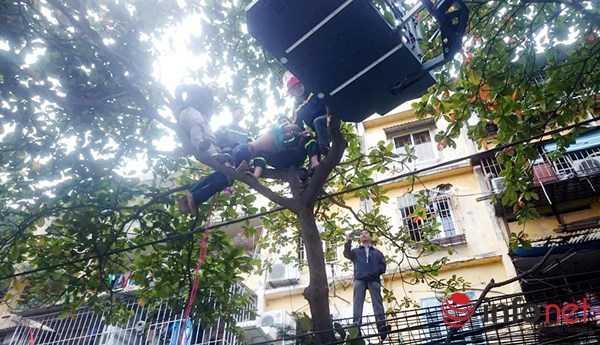 """Cơ quan công an bắt người đàn ông nghi """"ngáo đá"""" trèo trên cây xanh đập phá."""