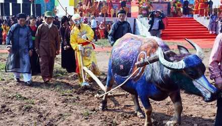 Lễ hội Tịch điền Đọi Sơn diễn ra vào ngày mồng 7 tháng Giêng hàng năm.