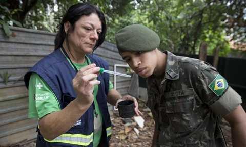 Virus Zika lây lan mạnh mẽ ở Brazil trong năm 2015