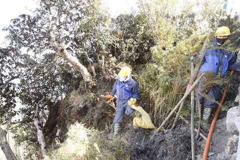 Với điều kiện thời tiết thất thường, vào những ngày sương mù hoặc mùa đông Sapa, công việc dự kiến còn vất vả hơn nhiều, chưa kể phải đối mặt với nhiều loại côn trùng độc hại