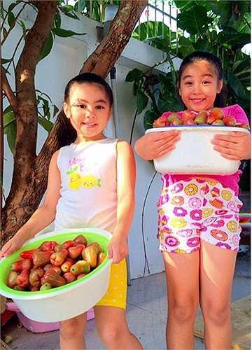 2 công chúa nhỏ của MC Quyền Linh vui mừng thu hoạch trái trong vườn nhà