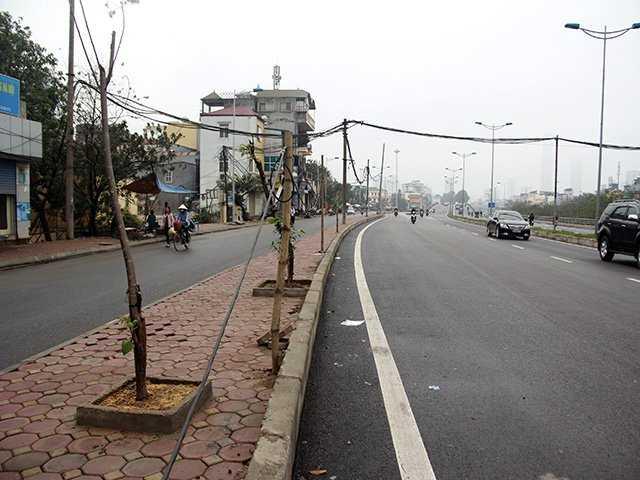 cột điện bằng gậy tre dựng giữa đường