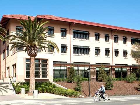 Tuy nhiên điều này không khiến bà suy sụp nhiều, nhất là trong sự nghiệp học hành, bà có 2 bằng đại học chuyên ngành Kinh tế và Kinh doanh tại Đại học Pennsylvania. Tốt nghiệp xong bà đi làm tại 2 công ty nổi tiếng ở Phố Wall là Merrill Lynch và Goldman Sachs. Sau đó không lâu, bà Laurene lấy bằng Thạc sĩ Quản trị Kinh doanh MBA tại Đại học Stanford vào năm 1989