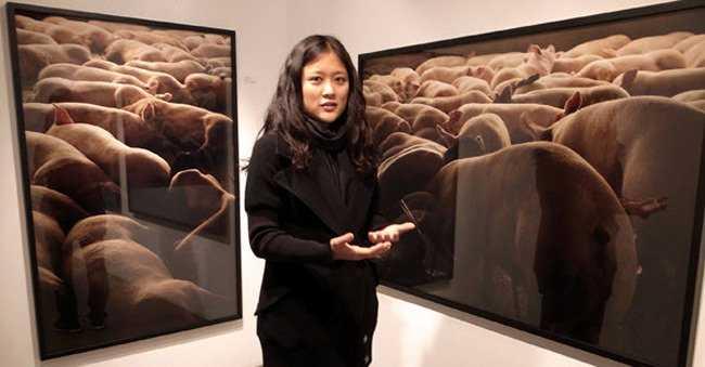 Nữ nhiếp ảnh gia khỏa thân ròng rã 104 tiếng chụp ảnh cùng cả đàn heo