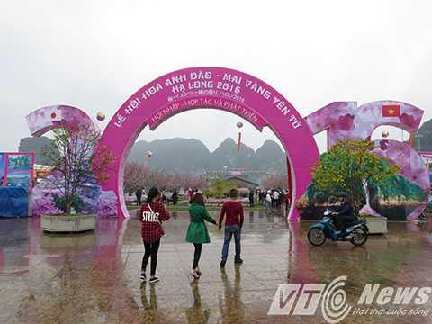Lễ hội Hoa Anh Đào - mai vàng Yên Tử 2016 tại TP Hạ Long, tỉnh Quảng Ninh