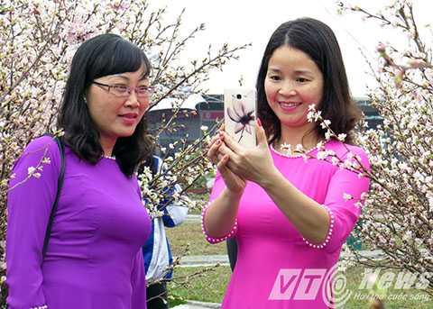 Đông đảo chị em phụ nữ cũng tranh thủ đến chụp ảnh kỷ niệm bên những cây Hoa Anh Đào mới được vận chuyển từ Nhật Bản sang Lễ hội