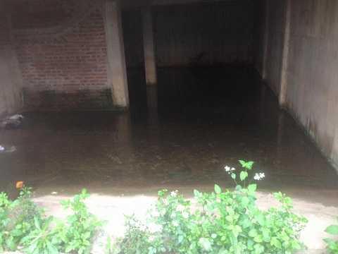 Nước mưa trữ trong những ngôi biệt thự đầy ruồi muỗi
