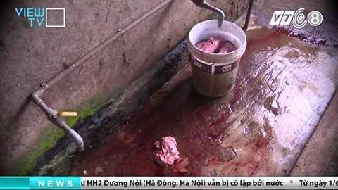 tham-nhap-lo-giet-mo-heo-banduong day mua ban heo chet dong nai_1
