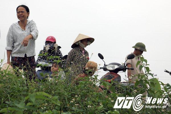 Hinh anh Anh: Hien truong hon 2ha chuoi bi nhom con do dat Cang dung dao kiem pha nat 33