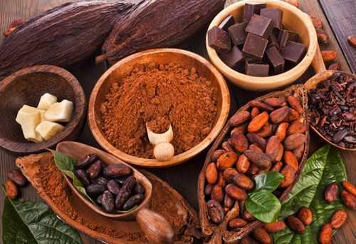 chocolatetotchosuckhoe_giaoducnetvn