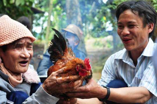 Hai cha con ông Hồ Văn Thanh và Hồ Văn Lang bắt gà chuẩn bị ăn Tết. Ảnh: Tử Trực
