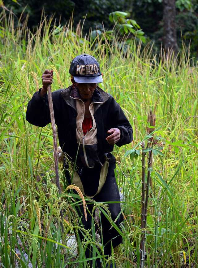 Năm 1997, người đàn ông này đã rời bỏ bản làng để vào rừng lập chòi sinh sống do không chịu được sự ồn ào và đông đúc.