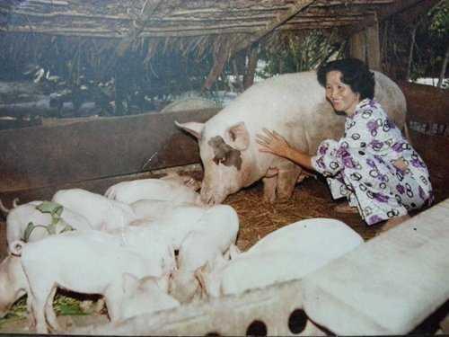 """""""Lộ"""" ảnh cực hiếm của gia đình Hoài Linh thời khó khăn - 1"""