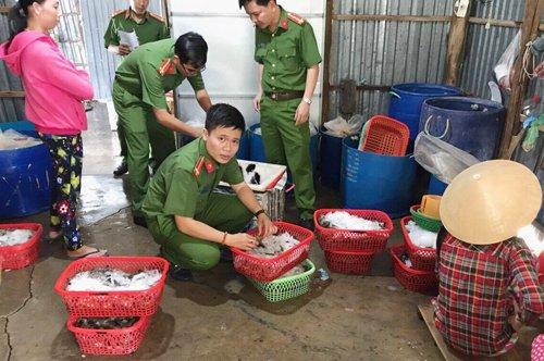 Ập vào hai cơ sở mua bán tôm, cảnh sát bắt giữ hơn chục công nhân đang bơm tạp chất vào tôm. Ảnh: Hiếu An.