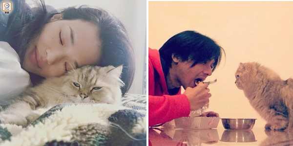 Dù vậy,Thư Kỳ từng úp mở về mối quan hệ vào năm 2014khi đăng tải bức hình mình và chú mèo cưng, sau đó tiếp tục chia sẻ bức hình Đức Luân chăm chút chú mèo khi cô đi vắng. Theo một nguồn tin, hai người đã dọn về sống chung tại nhà Thư Kỳ ở Đài Loan từ vài năm nay.