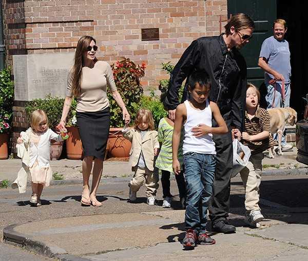 Brad Pitt bi cam gap con, cau xin Angelina co hoi thu hai hinh anh 2