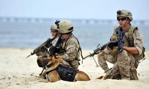 Các thành viên thuộc đội đặc nhiệm SEAL của hải quân Mỹ. Ảnh: AFP