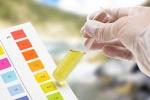Xét nghiệm nước tiểu phát hiện thực phẩm có hại