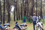 Người đàn ông treo cổ trong rừng thông