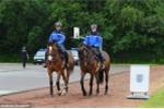 Tin tức Euro 16/6: Pháp cử kỵ binh bảo vệ tuyển Anh