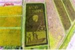 Ấn tượng hình ảnh Bác Hồ trên cánh đồng lúa ở Nghệ An